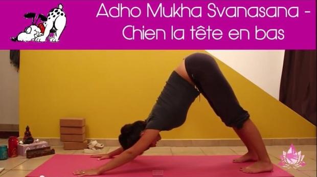 le yoga at home pens es by olivia. Black Bedroom Furniture Sets. Home Design Ideas